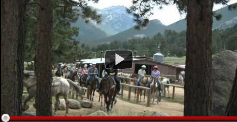 Jackson Stables Video